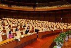 Thực hiện Chỉ thị số 05-CT/TW của Bộ Chính trị khóa XII: Góp phần củng cố niềm tin của nhân dân đối với Đảng, Nhà nước và chế độ