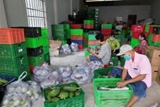 Giúp nông dân tiêu thụ nông sản trong mùa dịch