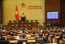 Kỳ họp thứ 11, Quốc hội khóa XIV: Phê chuẩn danh sách Phó Chủ tịch và Ủy viên Hội đồng Bầu cử quốc gia