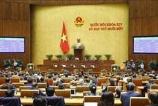 Kỳ họp thứ 11, Quốc hội khóa XIV: Phê chuẩn danh sách Phó Chủ tịch và một số Ủy viên Hội đồng Quốc phòng và An ninh