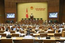 Kỳ họp thứ 9, Quốc hội khóa XIV: Thảo luận Chương trình mục tiêu quốc gia phát triển kinh tế - xã hội vùng đồng bào dân tộc thiểu số và miền núi giai đoạn 2021-2030