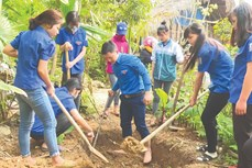 Bạc Liêu thu hút trí thức trẻ tình nguyện về các xã tham gia phát triển nông thôn