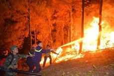 Hà Tĩnh nỗ lực dập các điểm cháy rừng ở các huyện miền núi Hương Sơn và Vũ Quang