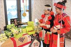 Kích cầu để đưa du lịch Hà Giang phục hồi, ổn định và tăng trưởng
