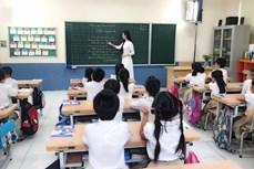 Lộ trình nâng trình độ chuẩn được đào tạo của giáo viên Mầm non, Tiểu học, Trung học Cơ sở