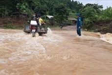 Mưa lũ tiếp tục gây ngập úng cục bộ, ách tắc giao thông tại Lào Cai