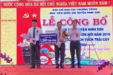Xã miền núi Lâm Sơn được công nhận đạt chuẩn nông thôn mới