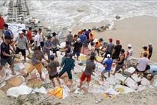 Ứng phó với bão số 9: Thừa Thiên – Huế khẩn trương gia cố kè chắn sóng, kêu gọi tàu thuyền về nơi trú ẩn