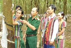 Bộ Tư lệnh Binh đoàn 16 phát triển kinh tế gắn với ổn định đời sống người dân vùng biên giới