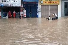 Ảnh hưởng bão số 12: Huyện miền núi Đồng Xuân (Phú Yên) bị cô lập hoàn toàn do nước lũ
