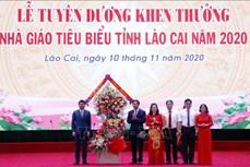 Lào Cai tuyên dương 230 nhà giáo tiêu biểu, xuất sắc năm 2020