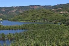 Đắk Nông: Dựa vào dân vùng đệm để quản lý, bảo vệ rừng