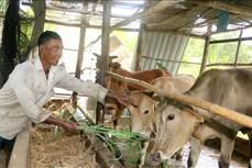 Vĩnh Long nâng cao đời sống đồng bào dân tộc Khmer (Bài cuối)