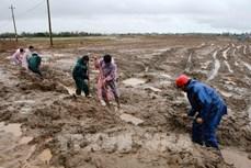 Hàng chục nghìn hộ ở Quảng Trị thiếu nước sinh hoạt sau lũ lụt