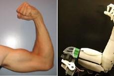 Mỹ phát triển robot mềm dẻo và linh hoạt như con người