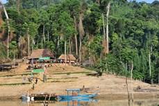Quảng Nam thành lập Vườn Quốc gia Sông Thanh
