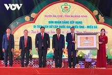 Huyện Ba Chẽ khai mạc Hội Trà Hoa vàng và đón nhận Bằng xếp hạng Di tích lịch sử cấp Quốc gia