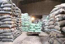 Hỗ trợ nhân dân gần 10.000 tấn gạo trong dịp Tết Nguyên đán 2021