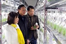 Dư địa phát triển lâm nghiệp của tỉnh Thái Nguyên còn rất rộng