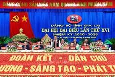 Vận dụng hiệu quả chính sách cho vùng đồng bào dân tộc thiểu số Gia Lai