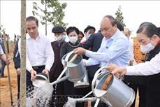 Thủ tướng Nguyễn Xuân Phúc phát động Tết Trồng cây Xuân Tân Sửu 2021 tại Tuyên Quang