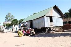 Gia Lai: Nhiều khó khăn trong kéo giảm nạn tảo hôn ở vùng dân tộc thiểu số