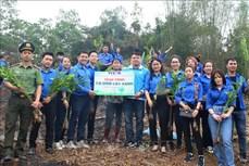 Tháng Thanh niên 2021: Tuổi trẻ Thông tấn xã Việt Nam trao tặng 10.000 cây xanh tại Hòa Bình