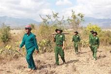 Ninh Thuận cấp bách phòng chống cháy rừng ngay từ đầu mùa khô