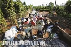 Đắk Nông công nhận thêm 7 xã đạt chuẩn nông thôn mới