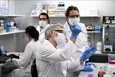 Dịch COVID-19: Các nhà khoa học Argentina nghiên cứu vaccine thế hệ 2