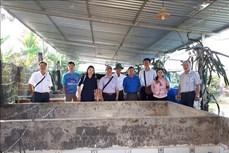 Hiệu quả từ nuôi thâm canh lươn đồng theo công nghệ tuần hoàn nước ở Cần Thơ