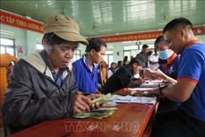 Thêm nguồn thu nhập cho người dân tham gia bảo vệ rừng ở Kon Tum