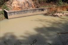 Ba em nhỏ tử vong do đuối nước ở Đắk Nông