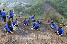 Tuổi trẻ cả nước đồng loạt ra quân chung tay xây dựng nông thôn mới