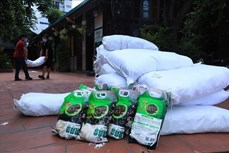 Hỗ trợ gạo cho các địa phương đang giãn cách xã hội