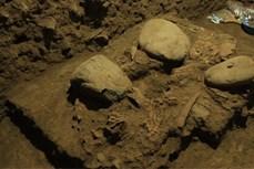 Bộ hài cốt hơn 7.000 năm tuổi tại Indonesia hé lộ lịch sử loài người