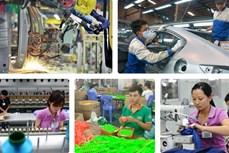Gần 49.000 lao động Đắk Lắk được hưởng các chính sách hỗ trợ theo Nghị quyết 68