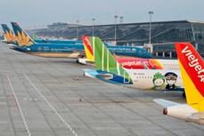 Cục Hàng không Việt Nam: Các hãng hàng không dừng bán vé máy bay nội địa