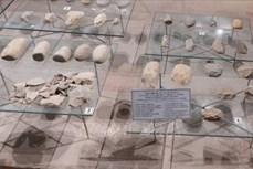 Nhiều bất ngờ thú vị sau khai quật di chỉ Bến Mậu A