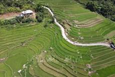 Huyện vùng cao Quỳnh Nhai chú trọng xây dựng nông thôn mới