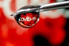 Thuốc tim mạch có thể giúp ngăn ngừa cục máu đông ở bệnh nhân COVID-19