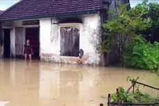 Mưa lớn gây ngập úng nhiều khu dân cư ở Nghệ An