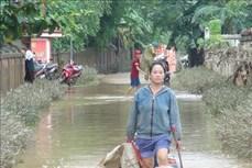 越南北部各省主动应对和克服暴雨洪涝灾害所造成严重后果