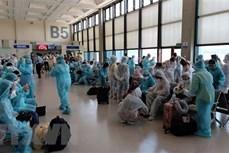 新冠肺炎疫情:将在新加坡的240多名越南公民接回国