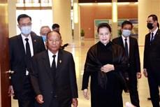 国会主席阮氏金银会见柬埔寨国会主席韩桑林