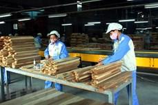越南林产品出口增长10%以上