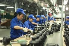 越南81%的企业对2020年四季度生产经营活动持乐观态度