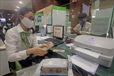 2020年越南信贷增长率可达8-9%