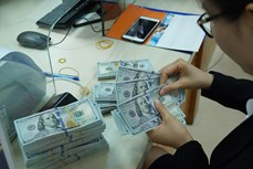 10月22日越盾对美元汇率中间价上调5越盾
