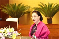 国会主席阮氏金银:越南国会为AIPA做出许多重要贡献